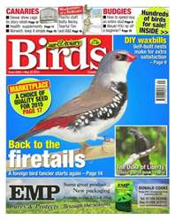 Cage & Aviary Birds issue No.5855 Back to the Firetails