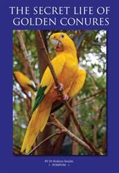 The Secret Life of Golden Conures issue The Secret Life of Golden Conures