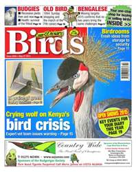 Cage & Aviary Birds issue No.5856 Crying Wolf on Kenya's Bird Crisis
