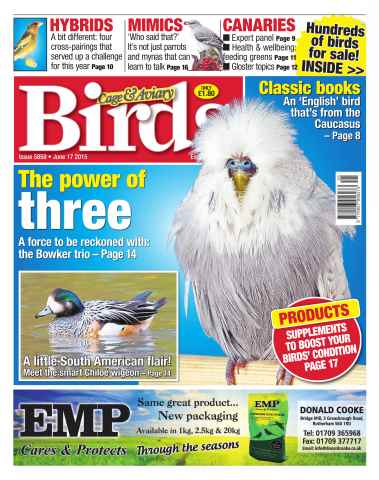 Cage & Aviary Birds issue No. 5859 The Power Of Three