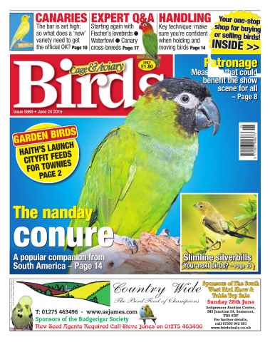 Cage & Aviary Birds issue No. 5860 The Nanday Conure