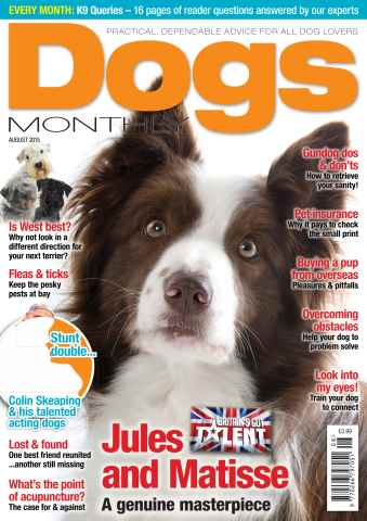 Dogs Monthly issue August 2015