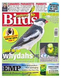 Cage & Aviary Birds issue No.5861 Food Fit For Whydahs