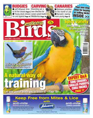 Cage & Aviary Birds issue No.5862 A Natural Way of Training