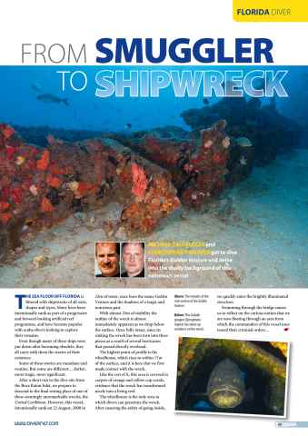 DIVER Preview 49