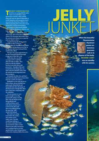 DIVER Preview 58