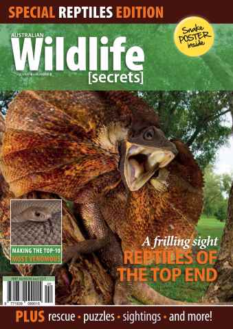Wildlife Secrets issue Volume 4 Number 2 - Special Reptiles Edition