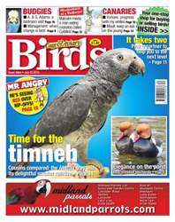 Cage & Aviary Birds issue No. 5864 Time for the timneh
