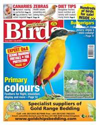Cage & Aviary Birds issue No. 5865 Primary colours