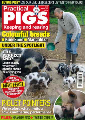 Practical Pigs issue No. 20 Colourful breeds