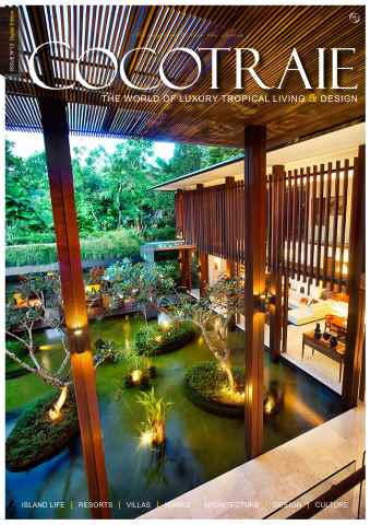 Cocotraie issue No.12