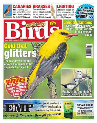 Cage & Aviary Birds issue No. 5866 Gold that glitters
