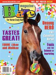 Issue No. 49 Summer 2015  issue Issue No. 49 Summer 2015