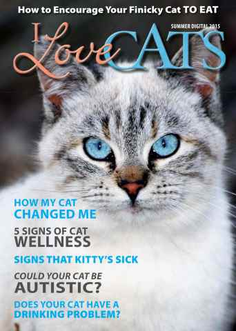 I Love Cats issue Summer 2015