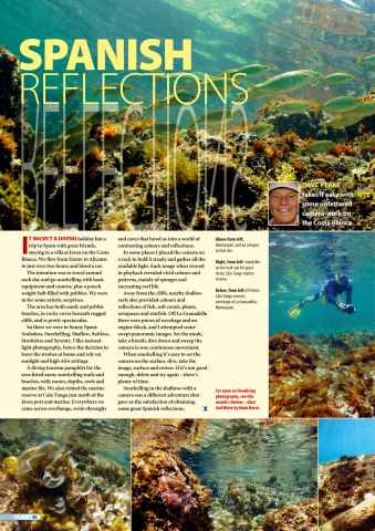 DIVER Preview 48