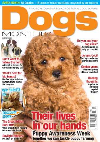 Dogs Monthly issue October 2015