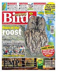 Cage & Aviary Birds issue No. 5870 Rules of the roost