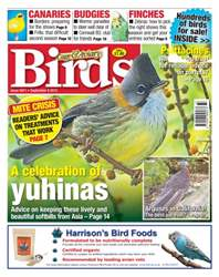 Cage & Aviary Birds issue No. 5871 A Celebration of Yuhinas