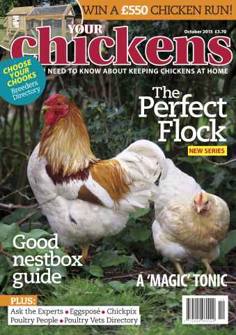 Your Chickens issue October 2015