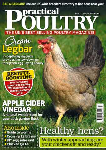 Practical Poultry issue No. 142 Cream Legbar