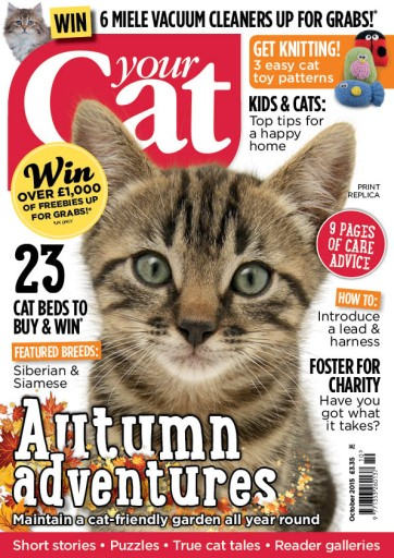 Your Cat issue Your Cat Magazine October 2015