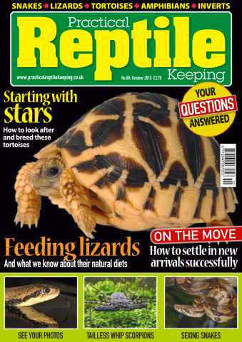 Practical Reptile Keeping issue No. 80 Starting with stars