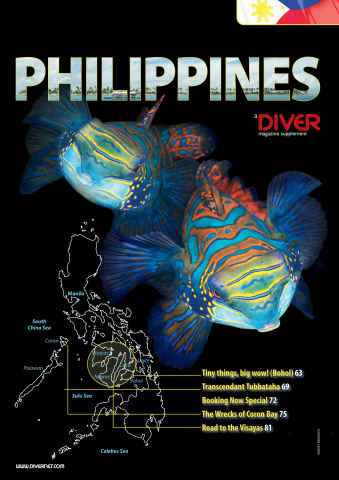 DIVER Preview 61