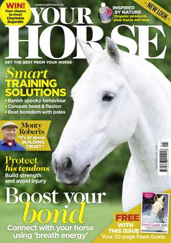 Your Horse issue November 2015