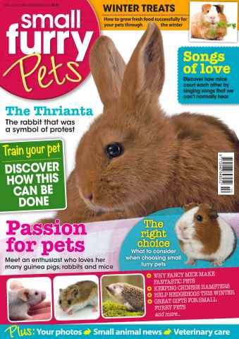 Small Furry Pets issue No. 24 Passion for pets