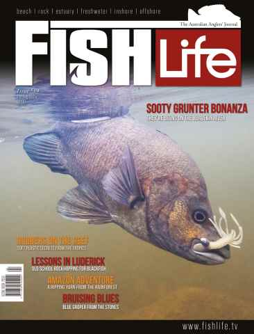 FishLife issue Issue #19