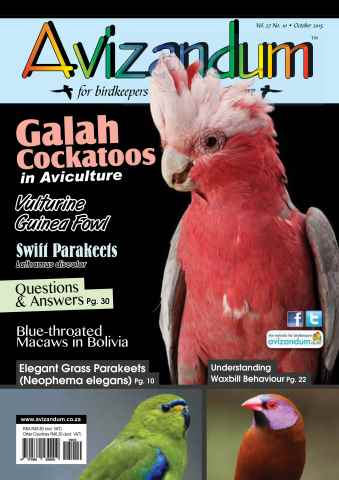 Avizandum issue October 2015