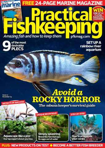 Practical Fishkeeping issue November 2015