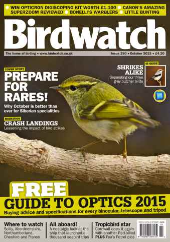 Birdwatch Magazine issue October 2015