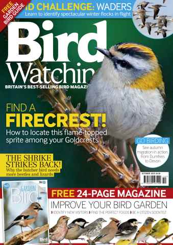 Bird Watching issue October 2015