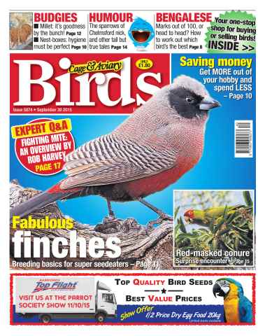 Cage & Aviary Birds issue No. 5874 Fabulous Finches