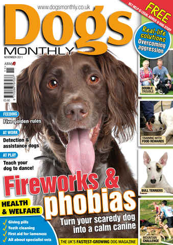Dogs Monthly issue November 2011