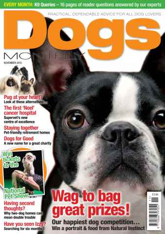 Dogs Monthly issue November 2015