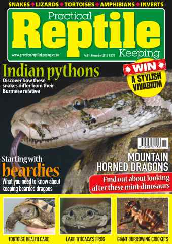 Practical Reptile Keeping issue No. 81 Indian Pythons