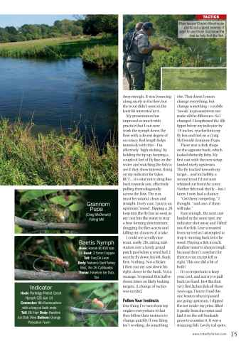 Total FlyFisher Preview 15