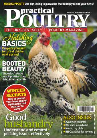 Practical Poultry issue No. 143 Hatching Basics