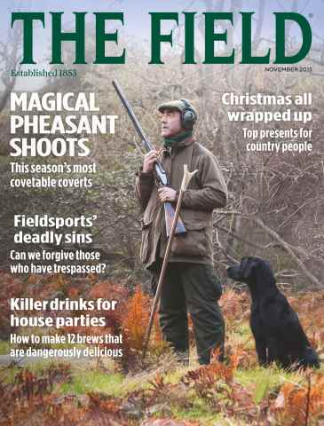 The Field issue November 2015