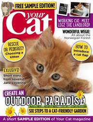 Your Cat Magazine FREE sample issue issue Your Cat Magazine FREE sample issue