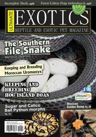 Ultimate Exotics issue November/December 2015
