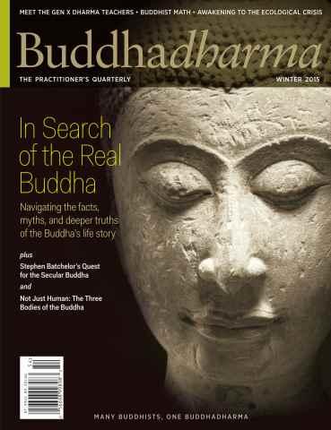 Buddhadharma issue Winter 2015