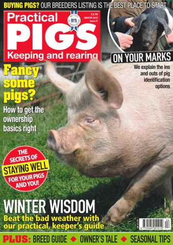 Practical Pigs issue No. 21 Fancy some pigs?