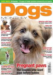 Dogs Monthly issue December 2015