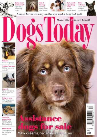 Dogs Today Magazine issue December 2015