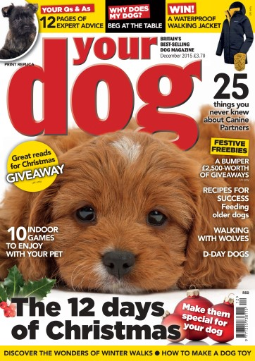 Your Dog issue Your Dog Magazine December 2015