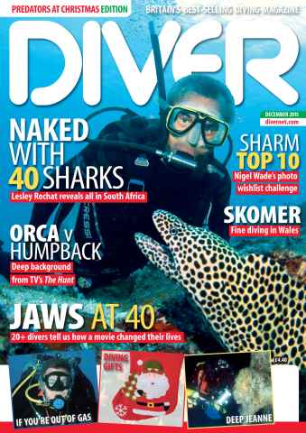 DIVER issue DECEMBER 2015
