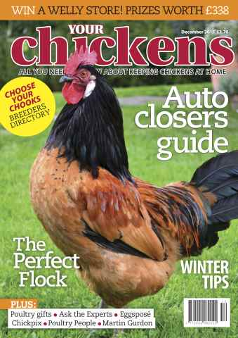 Your Chickens issue December 2015